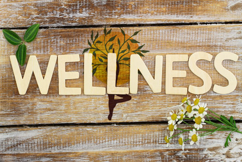 wellness consulting